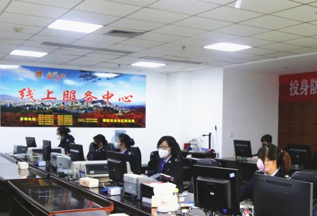 国家税务总局攀枝花市东区税务局线上服务中心.png