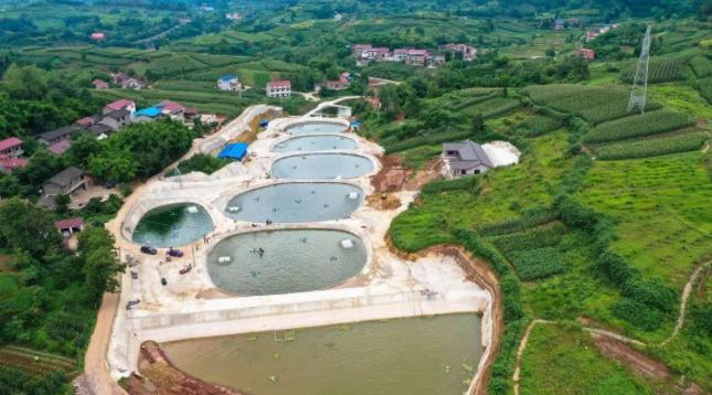 资中高位池生态循环养鱼
